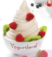  Giveaway: $20 Yogurtland gift card and T shirt
