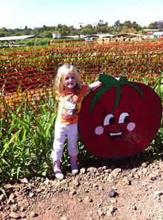 My friend's lil' pumpkin at Tanaka Farms.