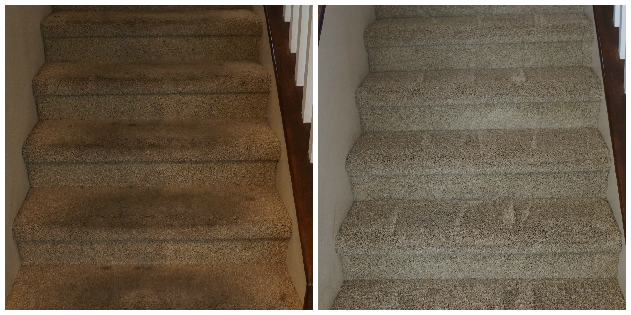 How to clean your carpets without chemicals oc mom blog for Zerorez hardwood floors