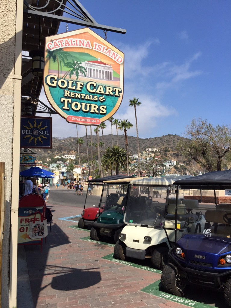 Guide To Seeing Catalina Island In A Day Oc Mom Blog
