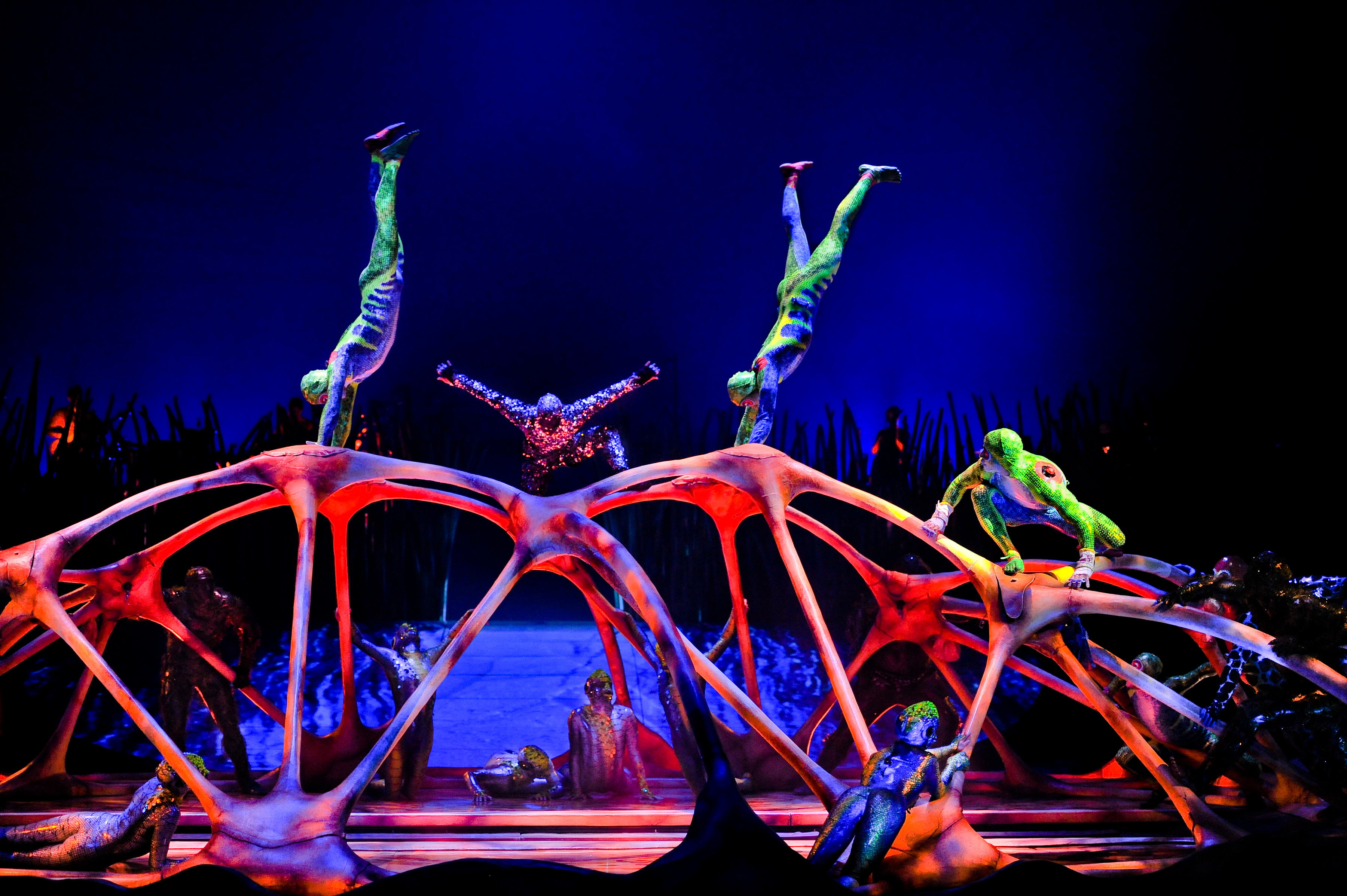 Dazzling Cirque Du Soleil Totem At The Orange County Great