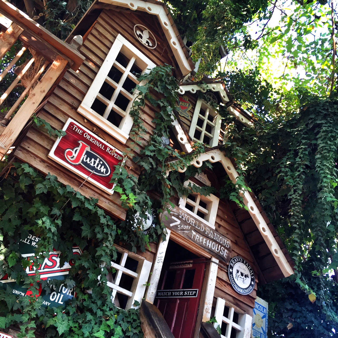 the worlds largest treehouse at bravo farms oc mom blog - Biggest Treehouse In The World 2016