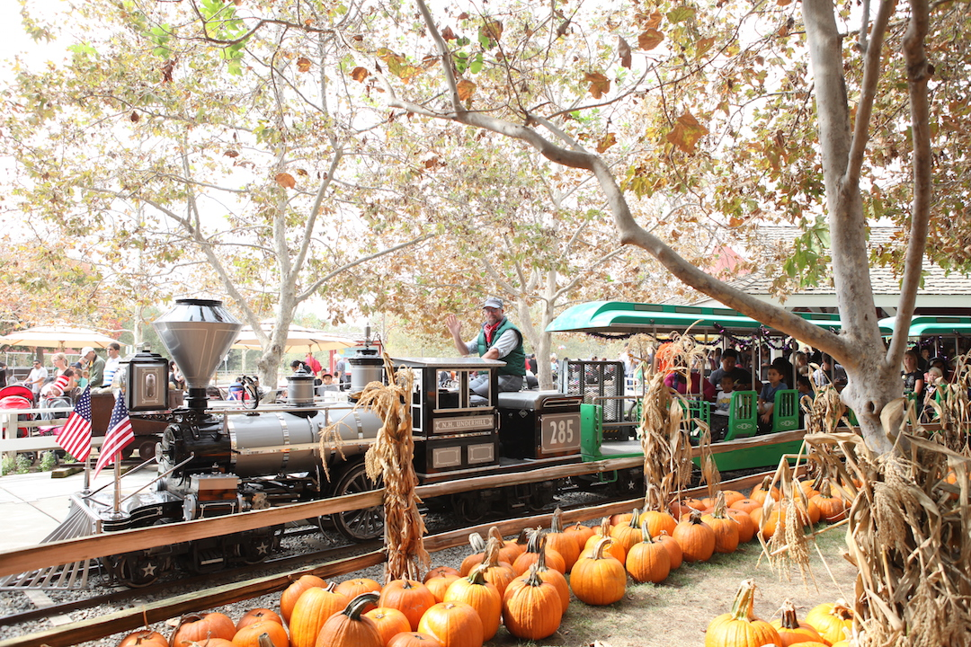 Image result for Irvine Park Railroad Pumpkin Patch